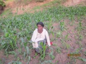 ZEWDE METAFERIA - Zimbabwe World Vision Microloan